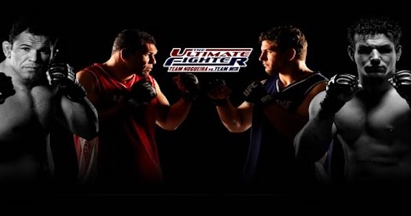 Watch The Ultimate Fighter: S25E12